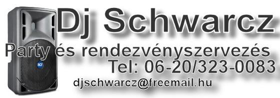 2010.06.17_ild