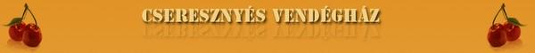 2010.04.29.Timi+Bp Kaposi Tibor Gyenesdiás - Cseresznyés Vendégház Keszthely hegység lábánál Mdencés ház biliárd csocso kondizás ping-pong gyermekfelszerelések